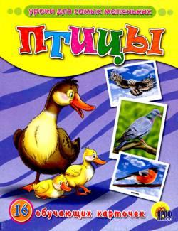 Обучающие карточки: Птицы